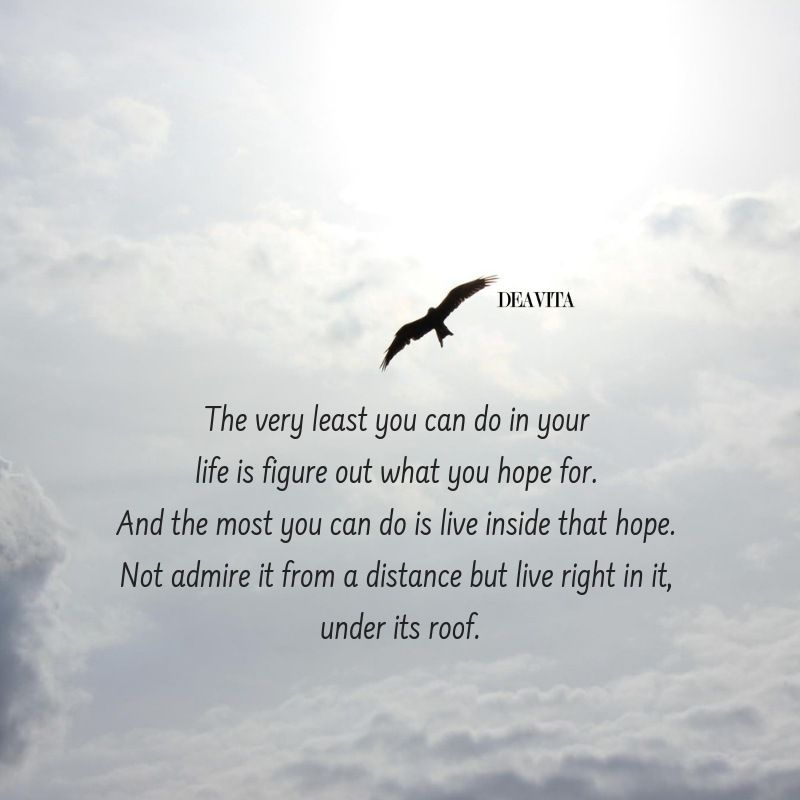 quote deavita the very least you can do in your life is figure out what you hope for most you can do is live inside that hope not admire it from a distance but live right in it under it's roof